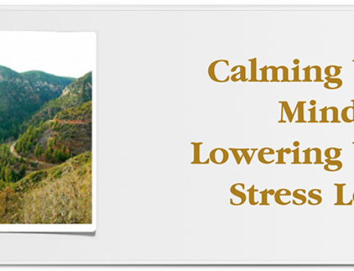 Calming Your Mind and Lowering Your Stress Levels