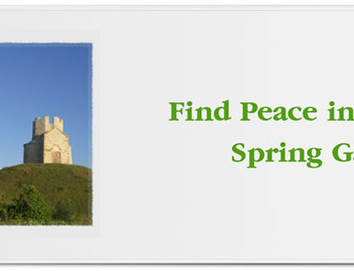 Find Peace in Your Spring Garden